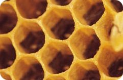 Honeycomb - hexagonal architecture